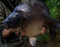Korda Thinking Tackle Season 3 Episode 5
